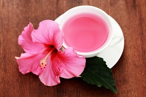 Чашка чая каркаде на фоне цветка гибискуса