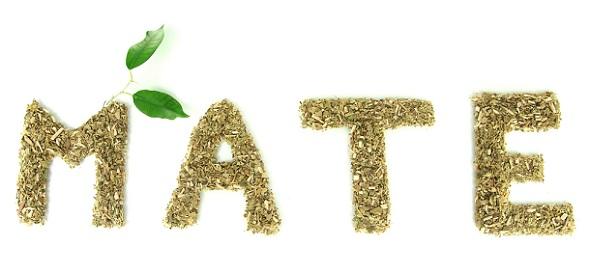 Сухие чайные листья мате