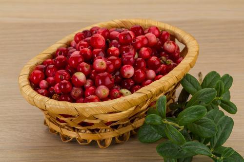 Свежие ягоды брусники