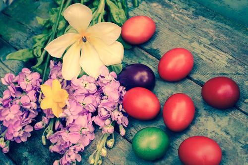 Яйца, покрашенные натуральными красителями