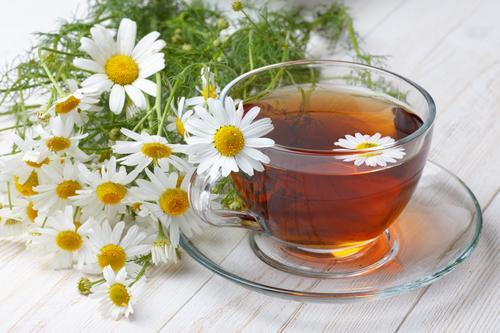 Чай с ромашкой на фоне свежих цветков растения