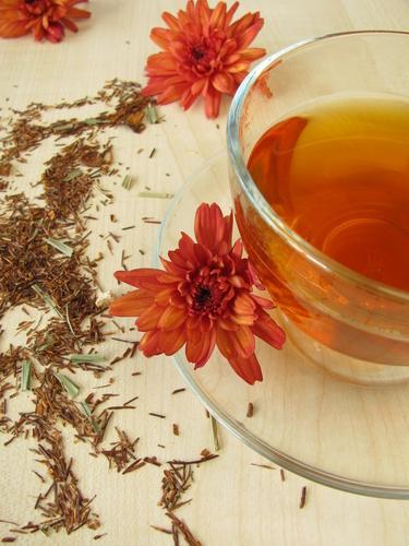 Свежезаваренный чай ройбуш и сырье для заваривания