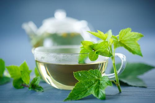 Свежезаваренный чай из листьев смородины