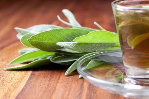 Чай из шалфея и свежие листья травы