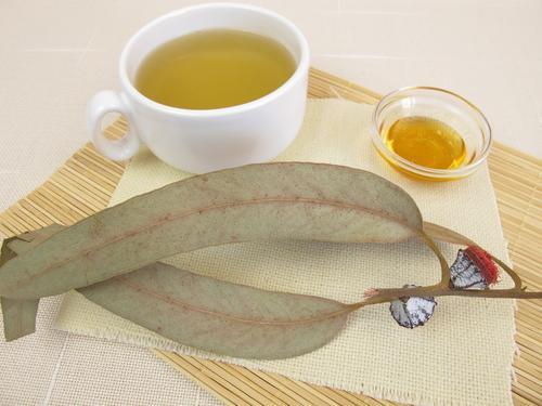 Чай с эвкалиптом и медом