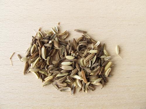 Семена фенхеля для чая