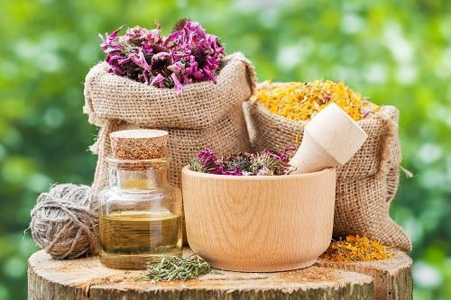 Сушеные травы для лечебного чая