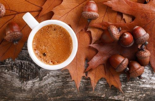 Чашка желудевого кофе на фоне свежих желудей