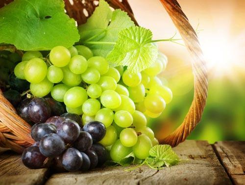Гроздья винограда с листьями