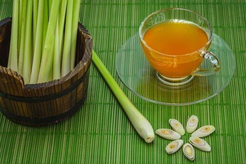 Трава лимонное сорго и чай на ее основе