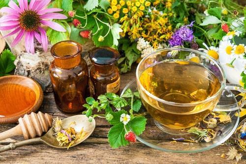 Разнообразие трав для чая