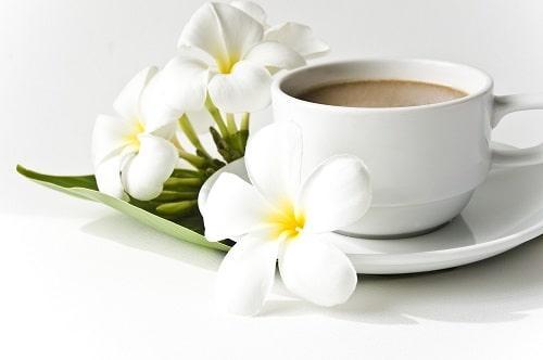 Чашечка кофе кон лече на завтрак